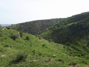 I Torrenti di Carcallè - Santa Rosalia (RG)