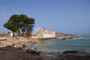 Vendicari: La fauna, la storia, il mare. (SR)