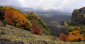 Colori d'Autunno sull'Etna