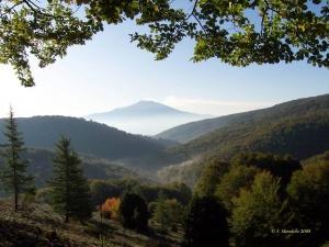 Dorsale dei Nebrodi - Mistretta - Floresta