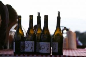 Wine&Go Trekking - Due Passi Lungo il Torrente