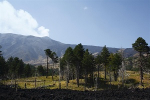 Monte Intraleo - Rifugio della Galvarina -Etna