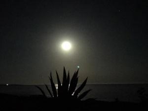 Luna Piena - Trekking e Spiaggia - Playa Grande a Cava d'Aliga