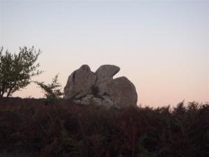 Trekking dell'Argimusco e Bosco di Malabotta - ME